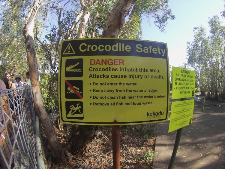 Crocodile Safety.JPG