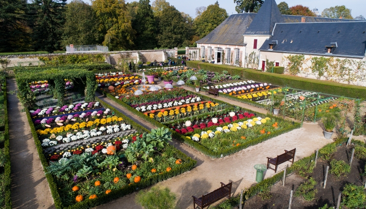 Culture Frenzy - Exposition - Cheverny - Potager